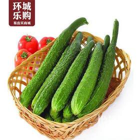 黄瓜一份500g右-518121 | 基础商品