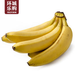 进口香蕉一份1kg左右-518893