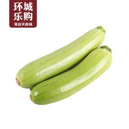 小瓜一份1kg左右-518077