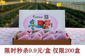 四季东城现摘新鲜草莓 9.9元/盒 限时秒杀 仅限200盒  两盒城区配送