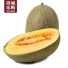 2kg新鲜哈密瓜-227580 | 基础商品