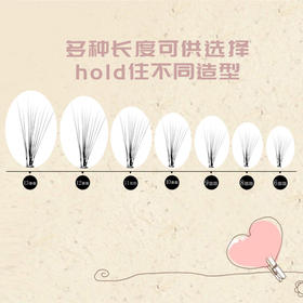 韩国MIRACLE 0.07mm粗度 10根朵毛