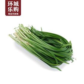 韭菜一份1kg左右-518084 | 基础商品