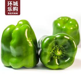 青椒1kg左右-517926 | 基础商品