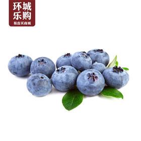 蓝莓一盒-519128 | 基础商品