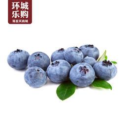 蓝莓一盒-519128