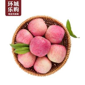 吉县苹果一份1kg左右-518978 | 基础商品