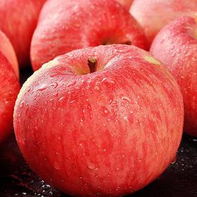新鲜水果 烟台红富士苹果 果农种植 不打腊带皮吃 5斤包邮