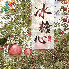 【趣玩生活】新疆阿克苏苹果 果径80mm-90mm 约4kg 冰糖心