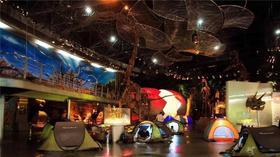 跨年夜和恐龙一起入眠,真好玩邀您参加博物馆奇妙夜~