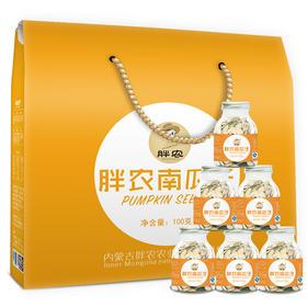 【熊猫微店】原味南瓜子礼盒内蒙古特产新货100g*6