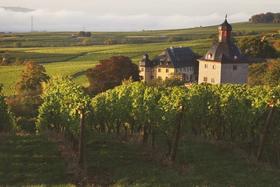 【上海】1月27日 探索雷司令的殿堂:全世界最古老的酒庄Schloss Vollrads庄主品鉴会