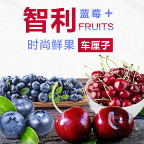 【新春感恩】智利进口爆汁车厘子+智利进口蓝莓鲜果新鲜蓝莓水果组合装
