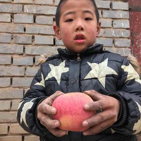爆仓3天内发货,临猗品质最优的特级果,童年的味道,越丑越好吃的临猗脆甜丑苹果,鲜嫩多汁,健康无害!