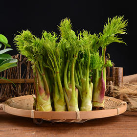 【东北农产】吉林通化野菜(刺嫩芽、猴腿、大叶芹、松茸)