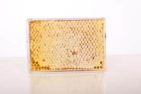 库什台蜂产品 蜂巢蜜