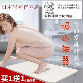 岩崎 硅藻土脚垫 卫生间门垫日本硅藻泥地垫吸水速干防滑地毯