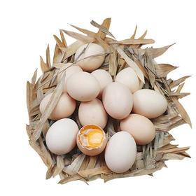 【京鸿达】山林散养新鲜土鸡蛋 能立起牙签的土鸡蛋 蛋黄密度结实 30枚