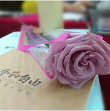 """广州丨第14届""""爱和自由""""初级幼儿教师短训班"""