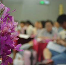 """广州丨第11届""""爱和自由""""幼儿园长管理培训"""