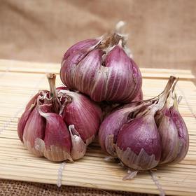 【美货】2017年山东金乡农家自种新鲜紫皮富硒种子干蒜大蒜头大蒜5斤包邮