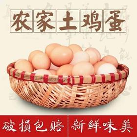 【南海网微商城】爱心扶贫 东方乐安村 农家土鸡蛋 30枚礼盒装包邮