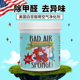 Bad Air Sponge 空气净化剂新房装修汽车除甲醛祛异味400g