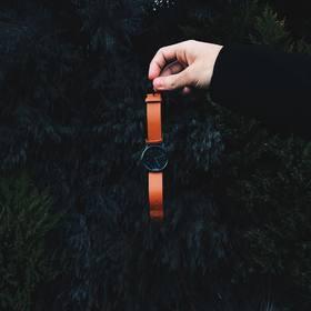 新加坡 HYPERGRAND时尚潮流防水石英腕表尼龙中性手表 CW01BBHNY 38mm