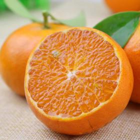 【好多人】优选 北海沃柑 少渣多汁蜜甜可食率高达74% 出汁率是普通柑橘的3倍