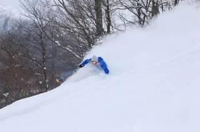 安比+八甲田粉雪爽滑行程