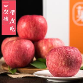 【奥运会专供】陕西洛川苹果 0农残 饱满多汁 脆甜爽口 精品礼盒标准80果径  孕妇都可放心吃 送礼佳品