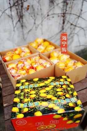 【海宁购·寻美食】来自福建武夷山的美味 桔柚(10斤装)每周五提货