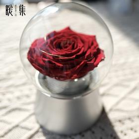 【亲爱】进口厄瓜多尔永生玫瑰音乐盒