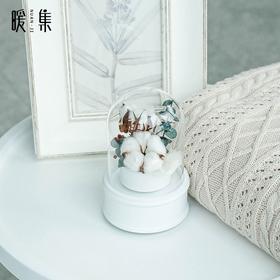【冬季、lucky】干花永生花音乐盒家居摆件