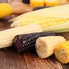 来自新疆天山脚下的有机富硒玉米,10支礼盒装(4黑、2黄、2白、2甜)2200g,从采摘到成品仅2小时,极度保鲜