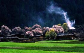 【开春迎新】川藏318金川,林芝,拉萨,最美景观大道11天