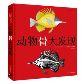 【7-14岁】《动物骨大发现》趣味翻翻书!海洋动物骨头骨骼科普百科书籍大全,动物百科全书,儿童版畅销书籍,培养孩子想象力和观察力