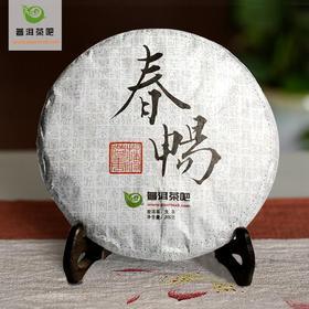 2017普洱茶吧春畅易武薄荷塘春茶生茶200克