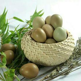 山东七彩野鸭蛋新鲜农家野鸭蛋,正宗生态自然