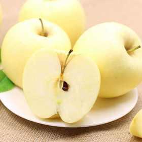 【老爹果园】黄金冰糖心苹果 晚45天采摘 自然成熟的味道 5斤9颗精品大果