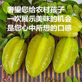 【美货】福建特产果园现摘新鲜杨桃5斤