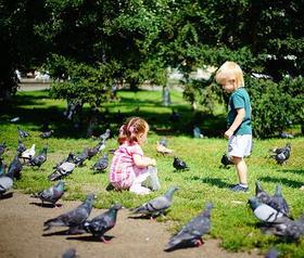 父母课堂二丨儿童成长的基本需求