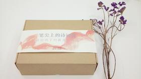 笔尖上的诗词课-礼盒版