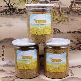 [优选]小麦胚芽 提高免疫力 降压降血糖 减肥排毒 5瓶 共4斤