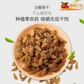 吐鲁番无核白葡萄干 500g 零农药种植 天然晾晒无促干剂包邮