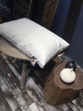 成人款防螨枕(双边)面料已获国际权威认证