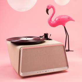 HYM-Seed 象牙白黑胶唱片机丨嘿呦音乐