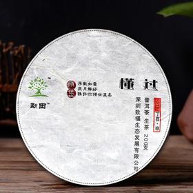 小璞家2017年春茶 临沧懂过古树茶云南大叶种普洱茶生茶饼茶 200g