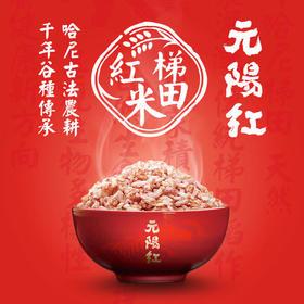 元阳梯田红米5斤麻袋装 营养的选择云上梯田1300多年民族传承原始农耕优质梯田红米