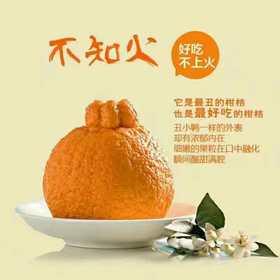 四川不知火丑柑5斤39.9元